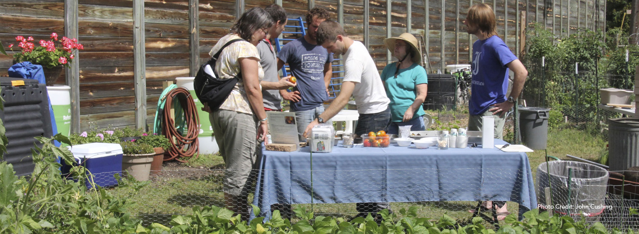 Prospect Park Minneapolis Community Garden